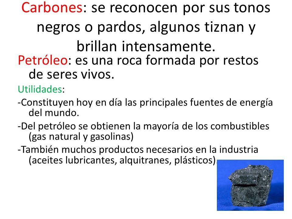 Carbones: se reconocen por sus tonos negros o pardos, algunos tiznan y brillan intensamente.