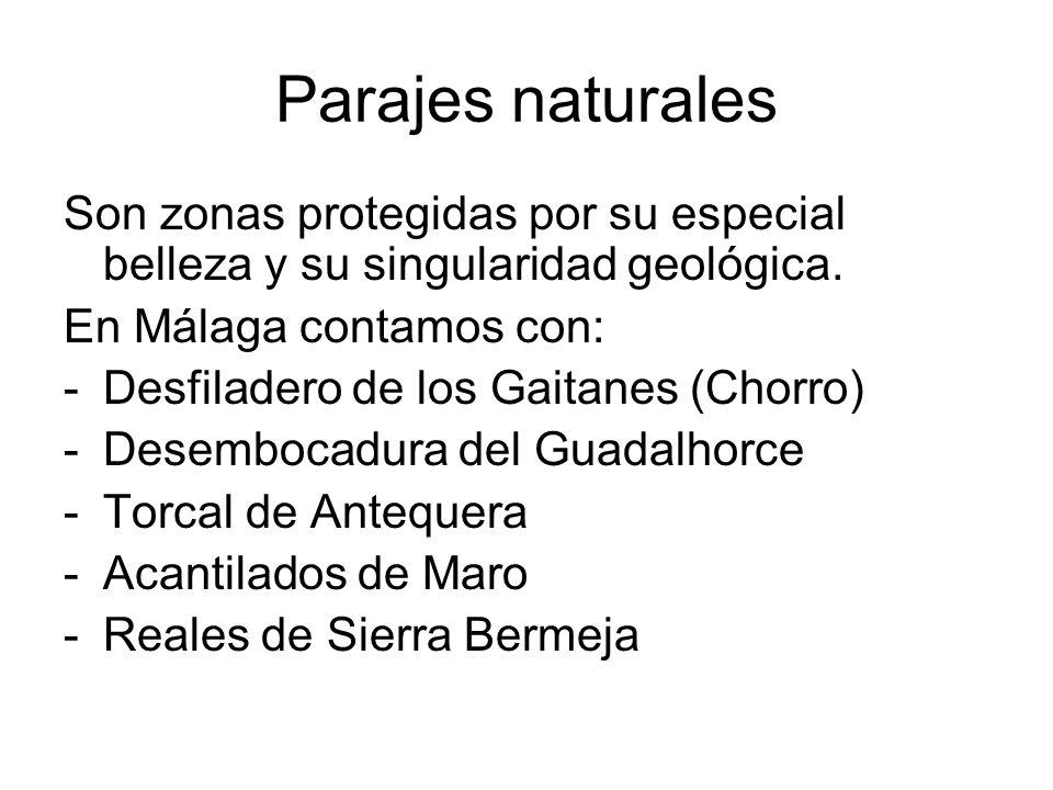 Parajes naturalesSon zonas protegidas por su especial belleza y su singularidad geológica. En Málaga contamos con: