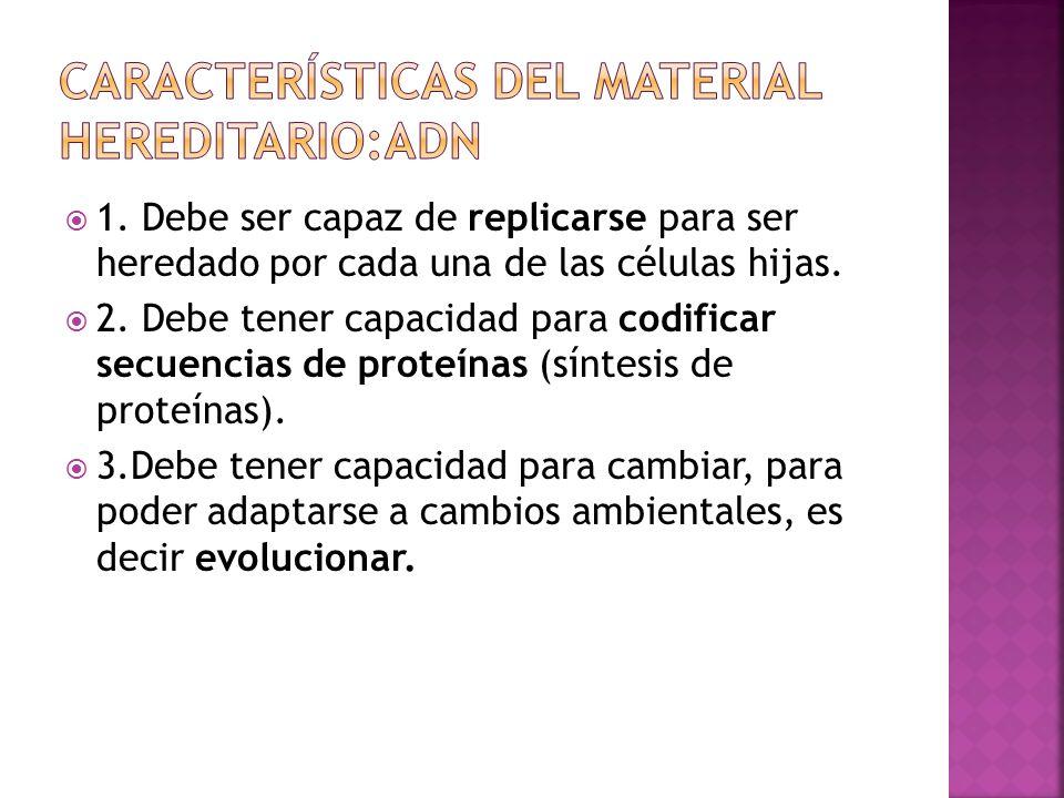 Características del material hereditario:ADN