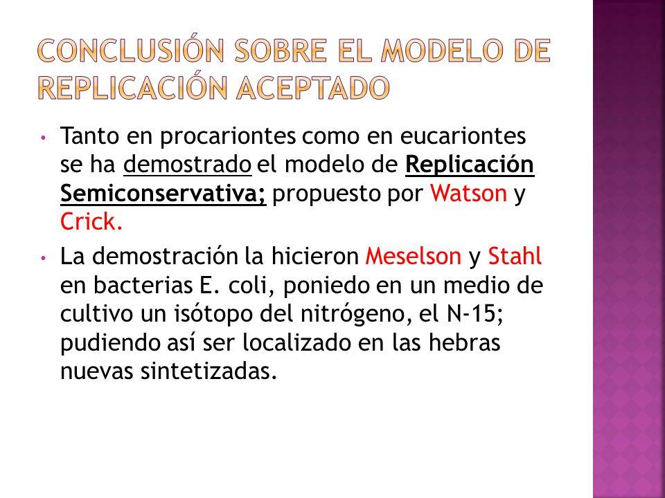 Conclusión sobre el modelo de Replicación aceptado
