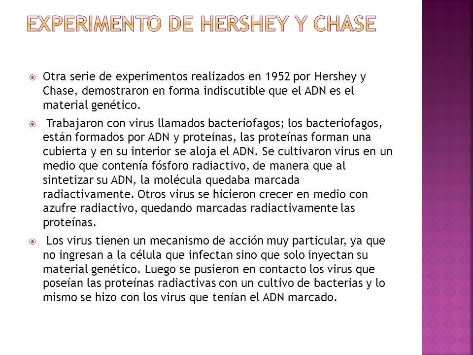 Experimento de Hershey y Chase