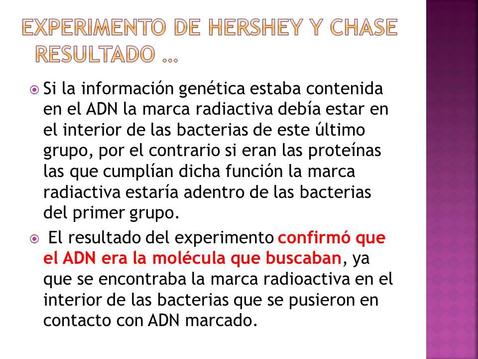 Experimento de Hershey y Chase resultado …