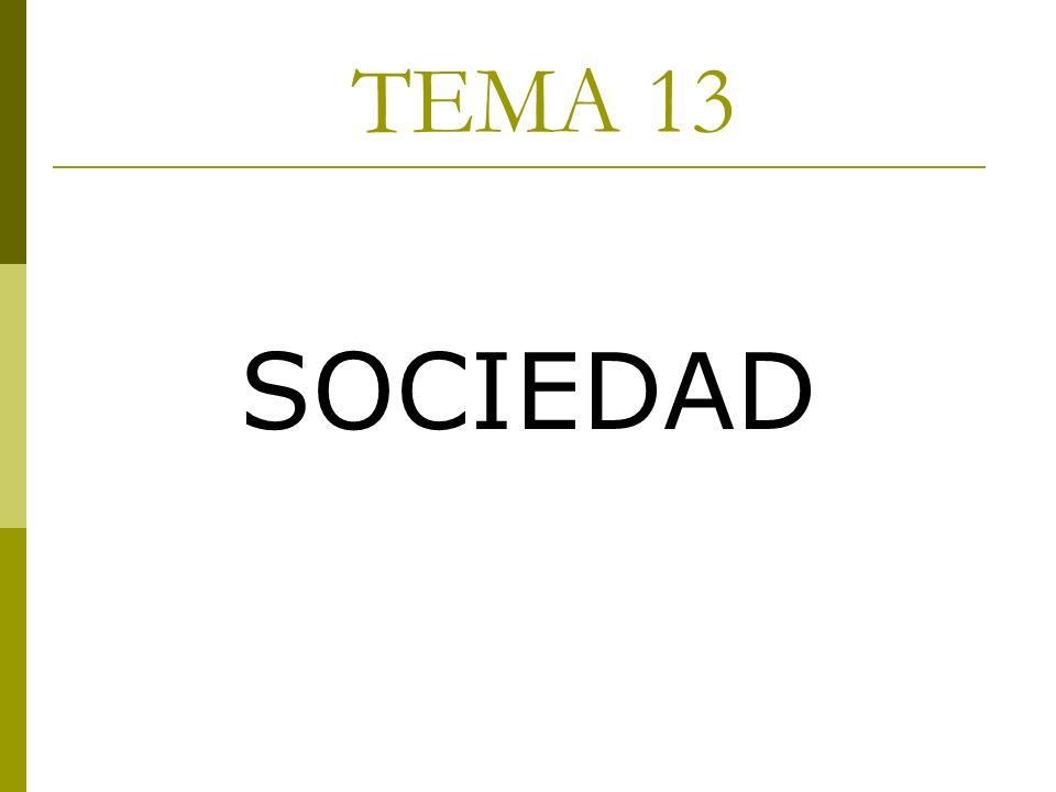 TEMA 13 SOCIEDAD
