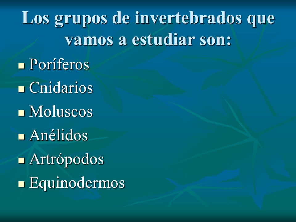 Los grupos de invertebrados que vamos a estudiar son: