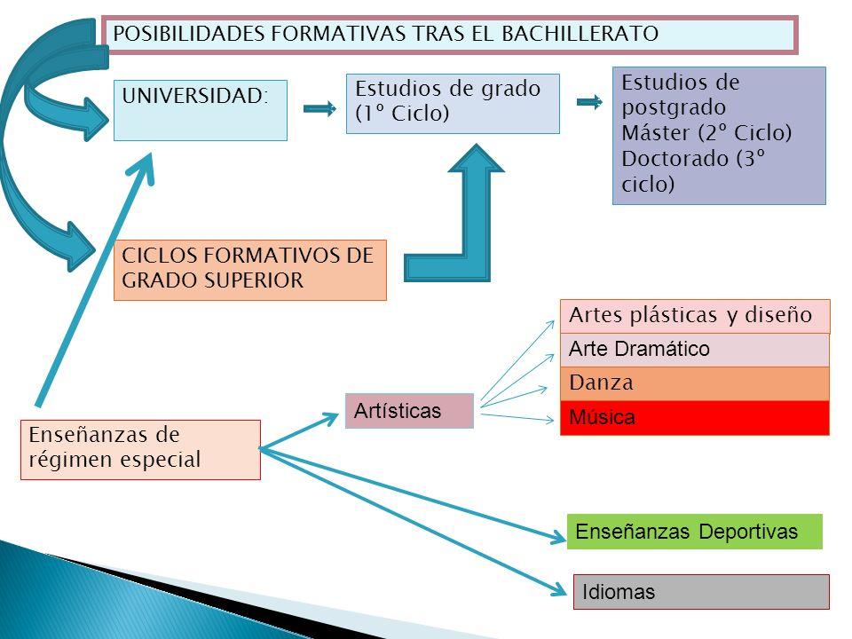 POSIBILIDADES FORMATIVAS TRAS EL BACHILLERATO