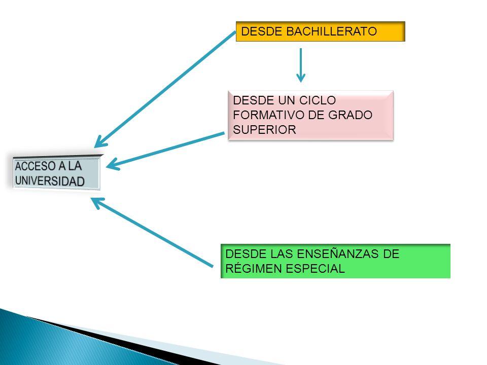 DESDE BACHILLERATO DESDE UN CICLO FORMATIVO DE GRADO SUPERIOR.