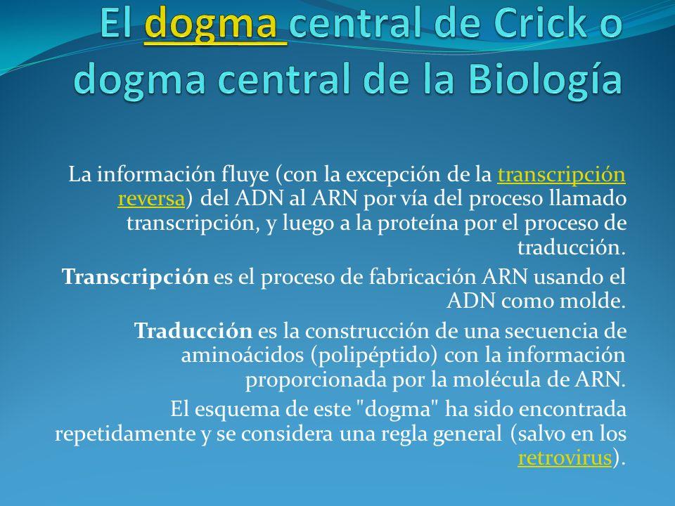 El dogma central de Crick o dogma central de la Biología