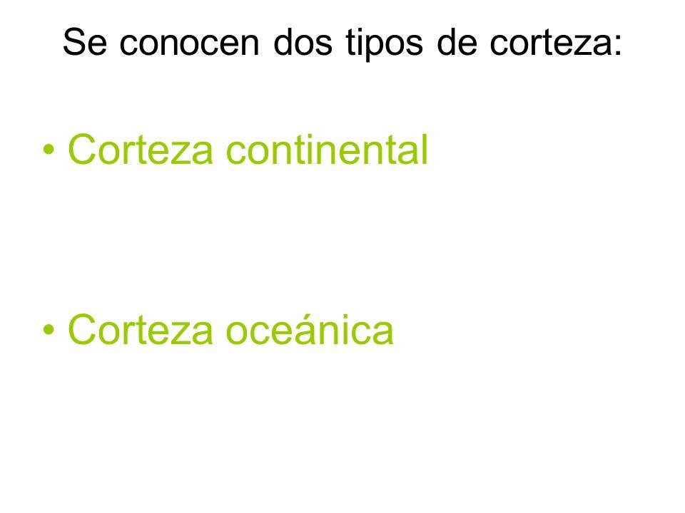 Se conocen dos tipos de corteza: