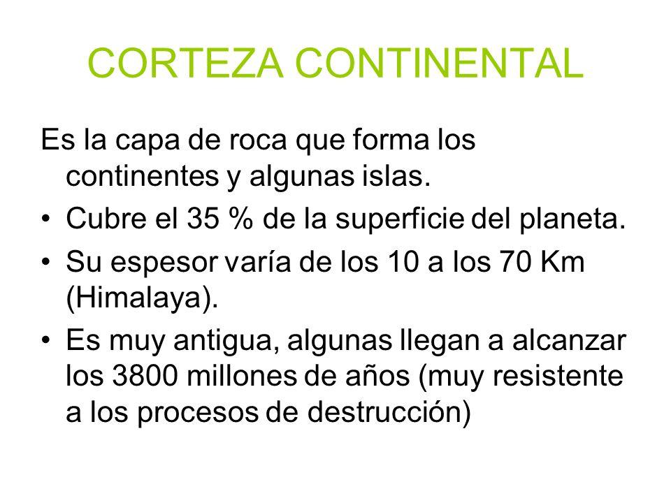 CORTEZA CONTINENTALEs la capa de roca que forma los continentes y algunas islas. Cubre el 35 % de la superficie del planeta.
