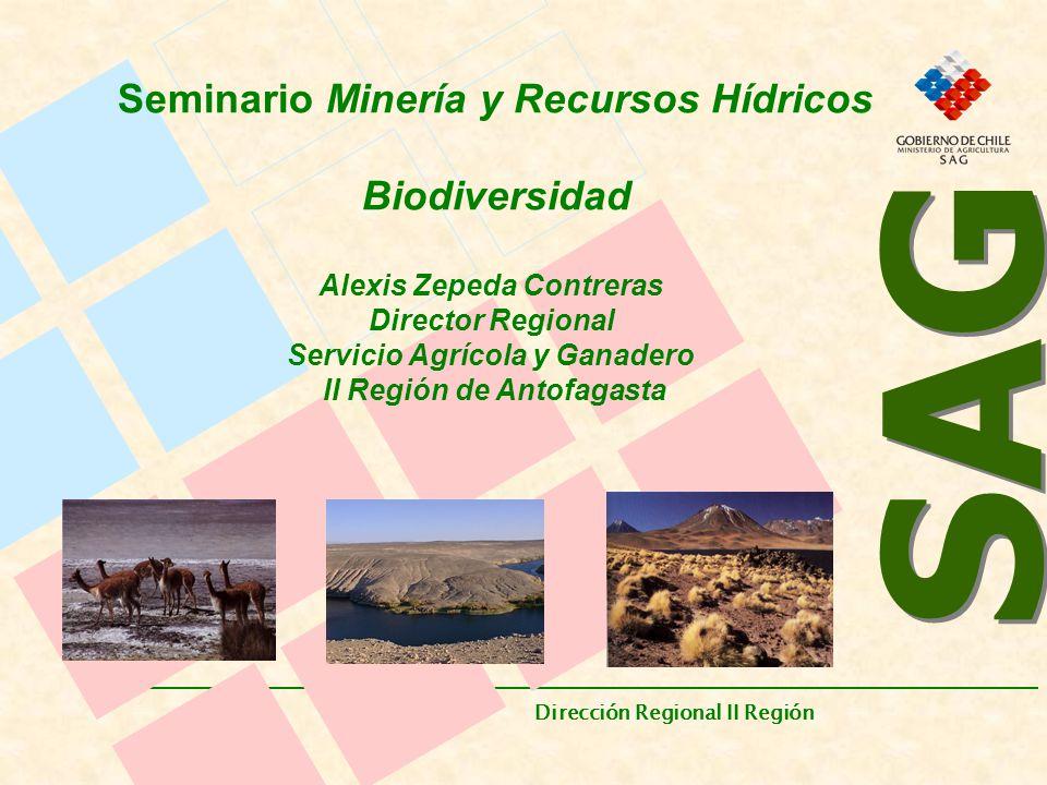 SAG Dirección Regional II Región.