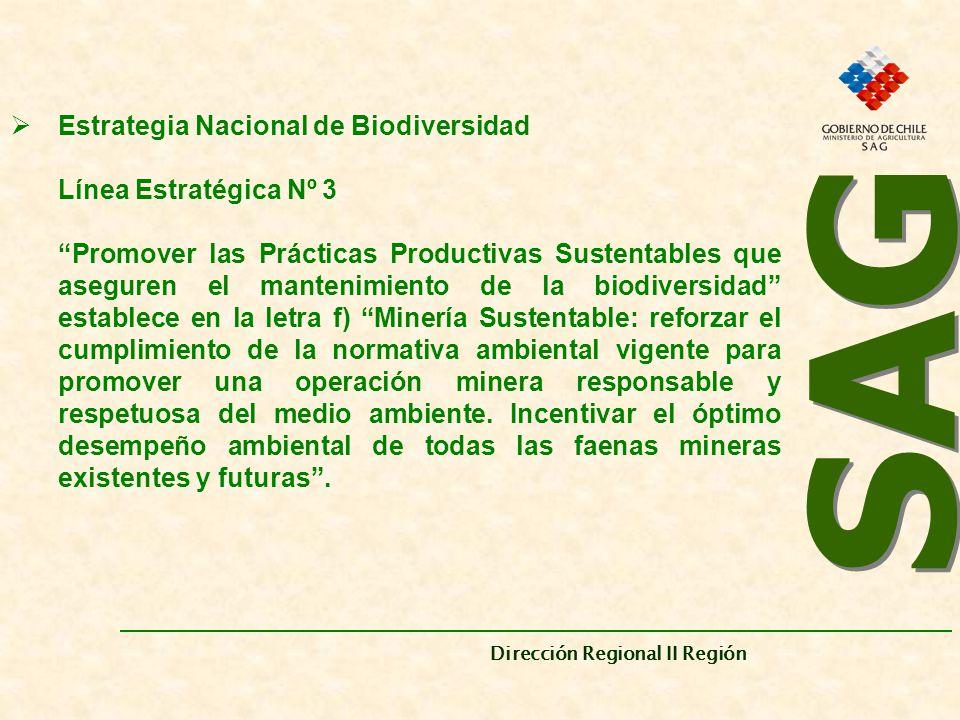 SAG Estrategia Nacional de Biodiversidad Línea Estratégica Nº 3