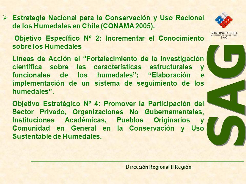 Estrategia Nacional para la Conservación y Uso Racional de los Humedales en Chile (CONAMA 2005).