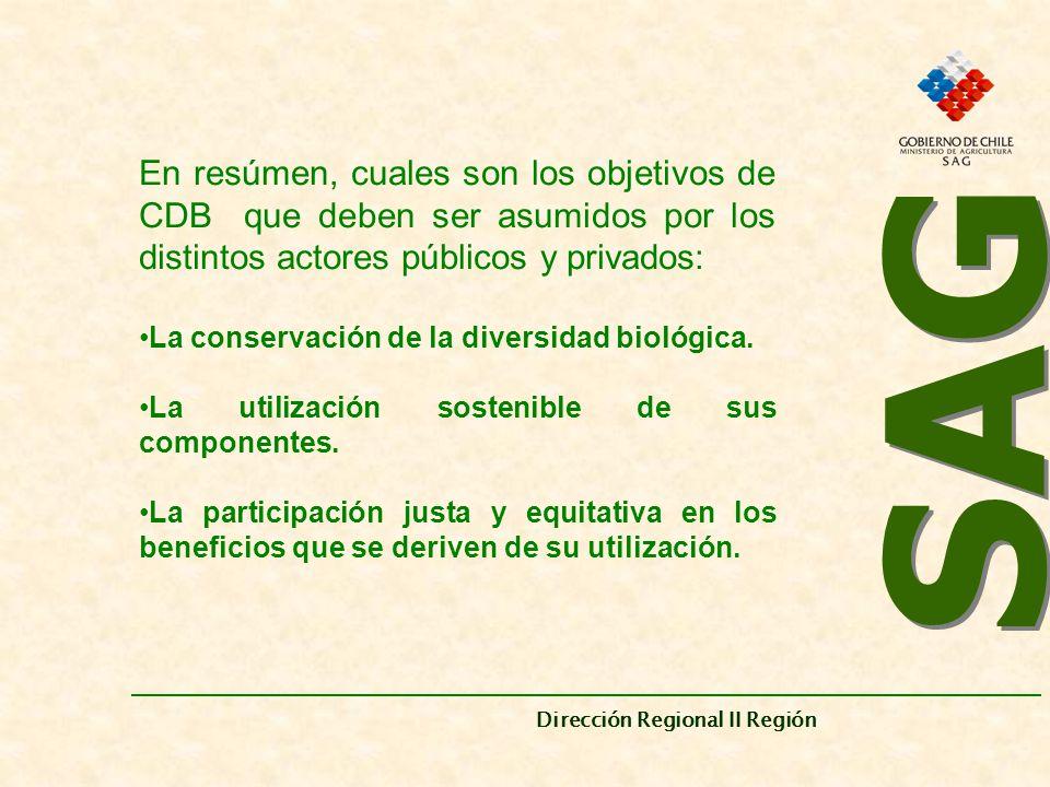 SAG Dirección Regional II Región. En resúmen, cuales son los objetivos de CDB que deben ser asumidos por los distintos actores públicos y privados: