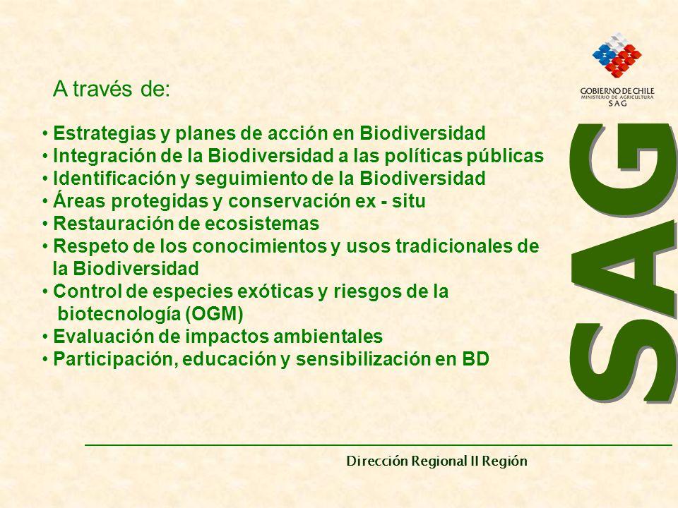SAG A través de: Estrategias y planes de acción en Biodiversidad