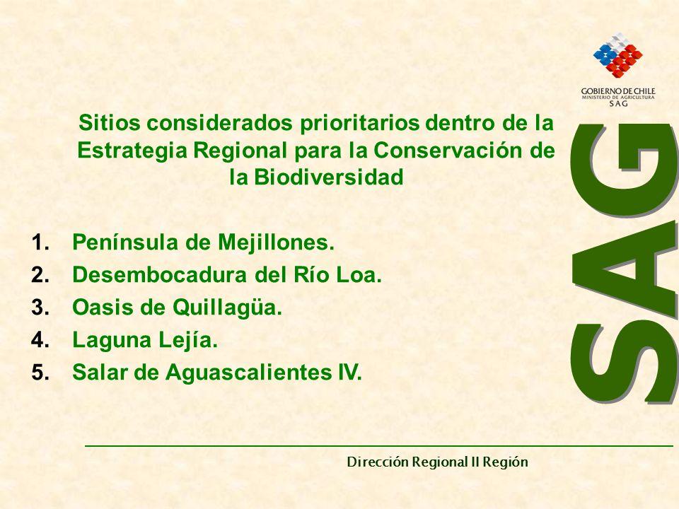 SAG Dirección Regional II Región. Sitios considerados prioritarios dentro de la Estrategia Regional para la Conservación de la Biodiversidad.