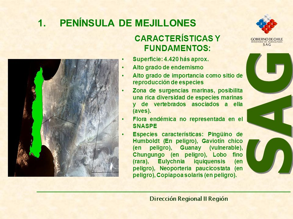 PENÍNSULA DE MEJILLONES CARACTERÍSTICAS Y FUNDAMENTOS: