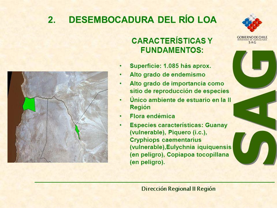 2. DESEMBOCADURA DEL RÍO LOA CARACTERÍSTICAS Y FUNDAMENTOS: