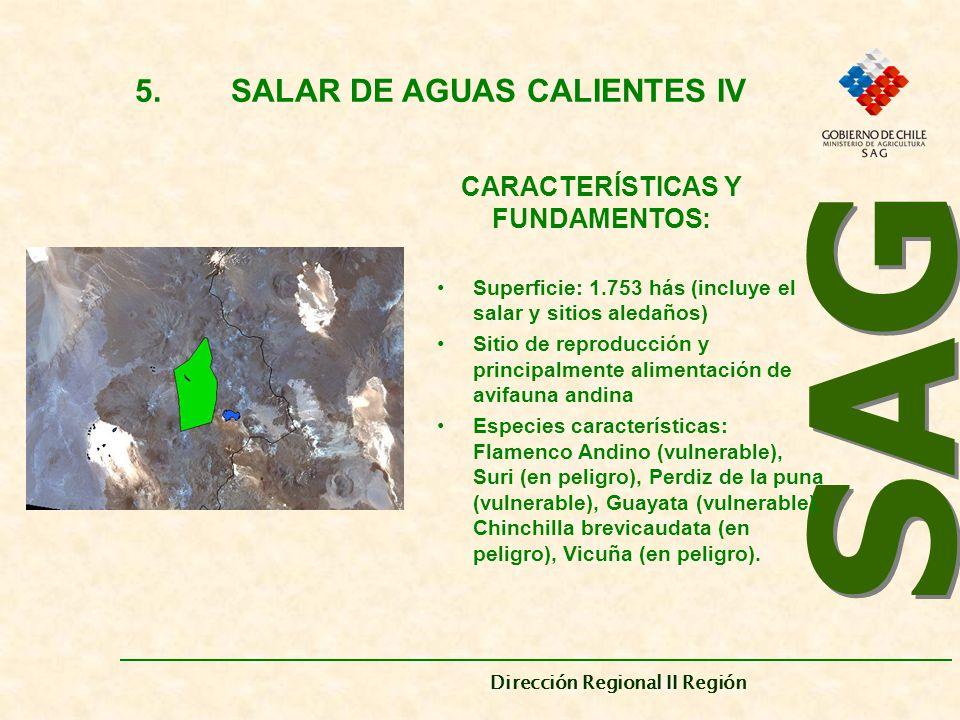 5. SALAR DE AGUAS CALIENTES IV CARACTERÍSTICAS Y FUNDAMENTOS: