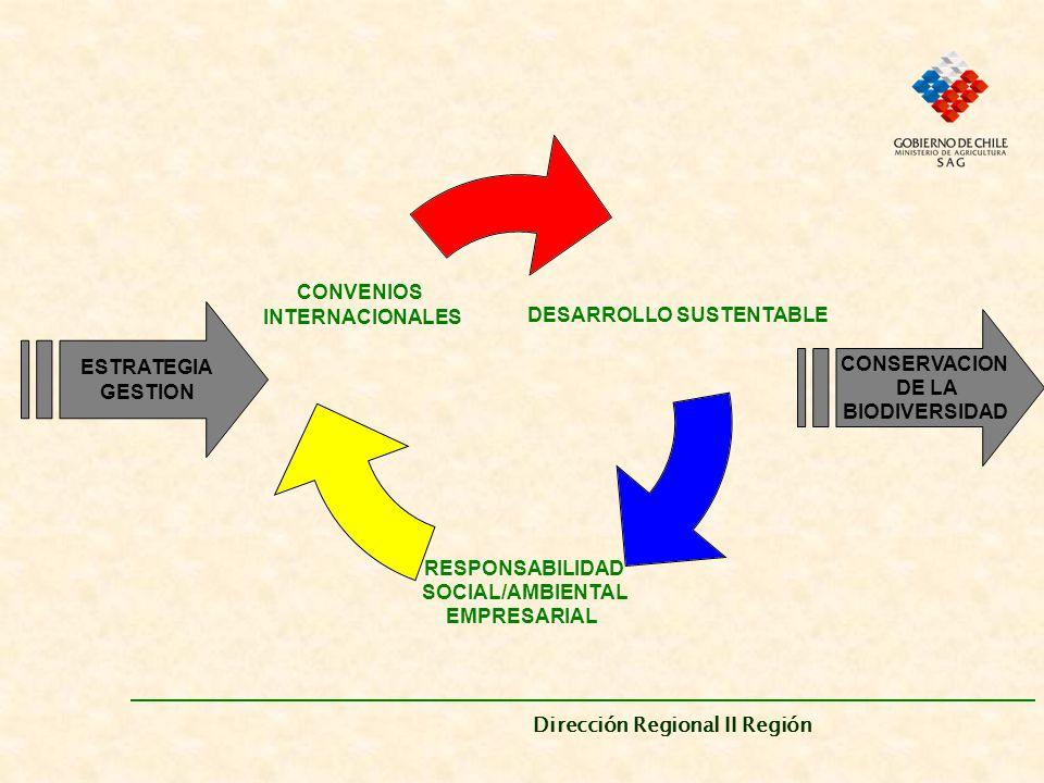 Dirección Regional II Región