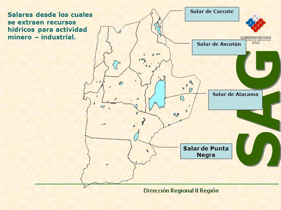 SAG Dirección Regional II Región. Salar de Carcote. Salares desde los cuales se extraen recursos hídricos para actividad minero – industrial.