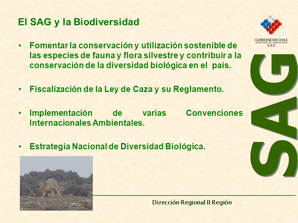 El SAG y la Biodiversidad