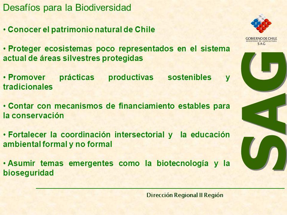 SAG Desafíos para la Biodiversidad
