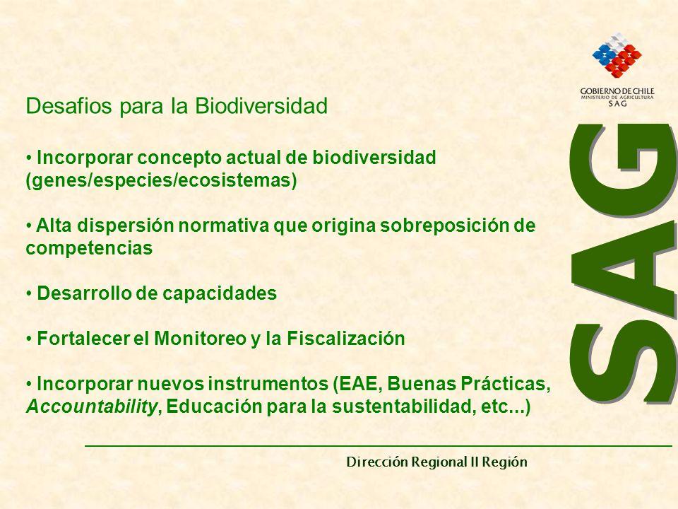 SAG Desafios para la Biodiversidad
