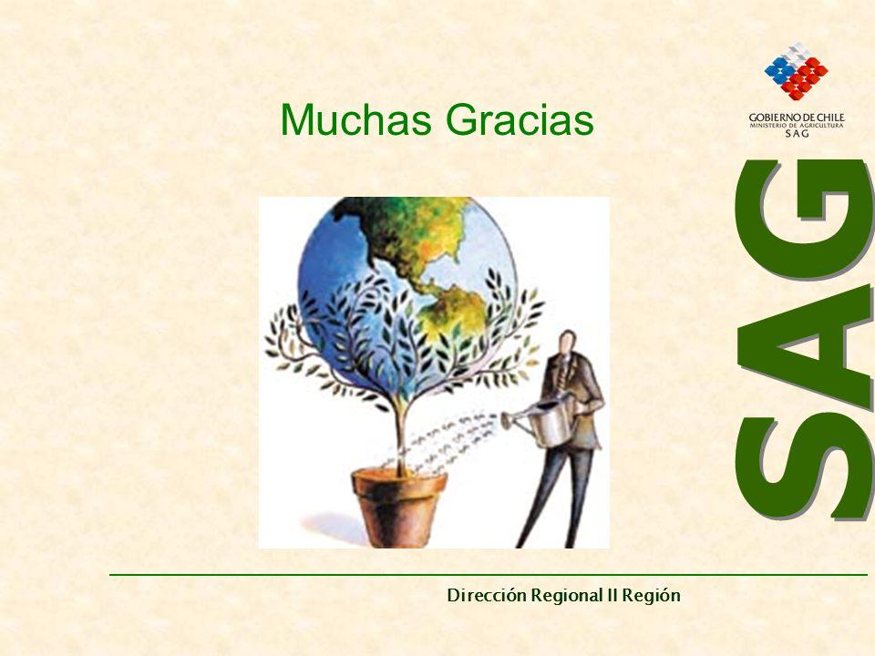 Muchas Gracias SAG Dirección Regional II Región