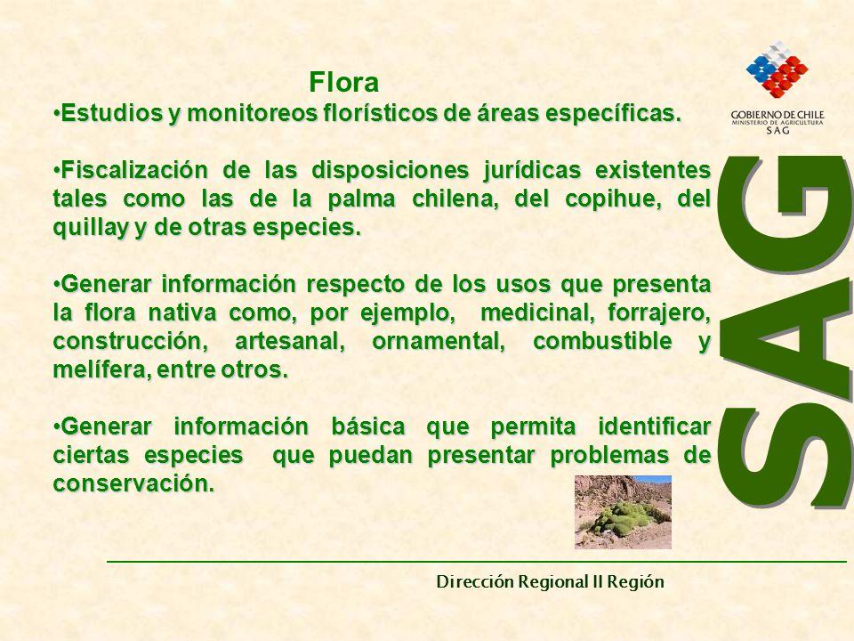 SAG Estudios y monitoreos florísticos de áreas específicas.
