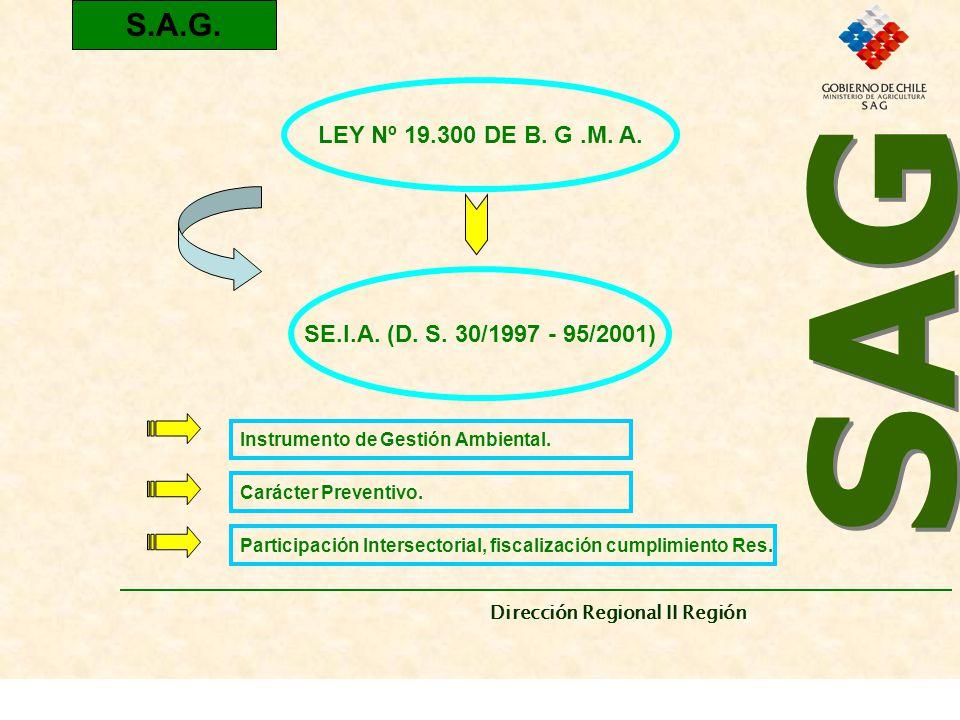 SAG Dirección Regional II Región. S.A.G. LEY Nº 19.300 DE B. G .M. A. SE.I.A. (D. S. 30/1997 - 95/2001)