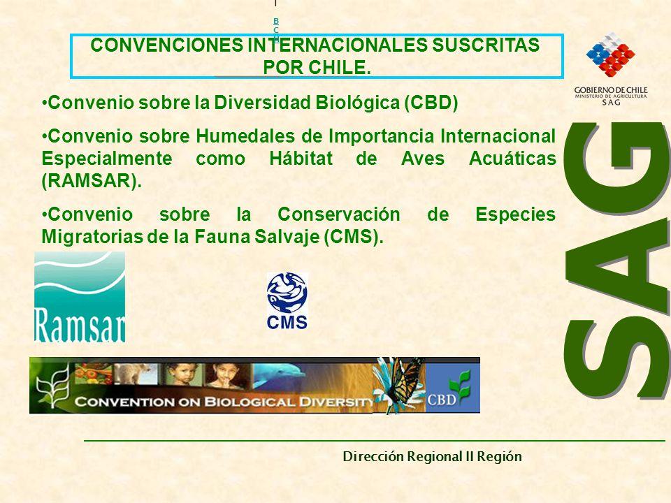 CONVENCIONES INTERNACIONALES SUSCRITAS