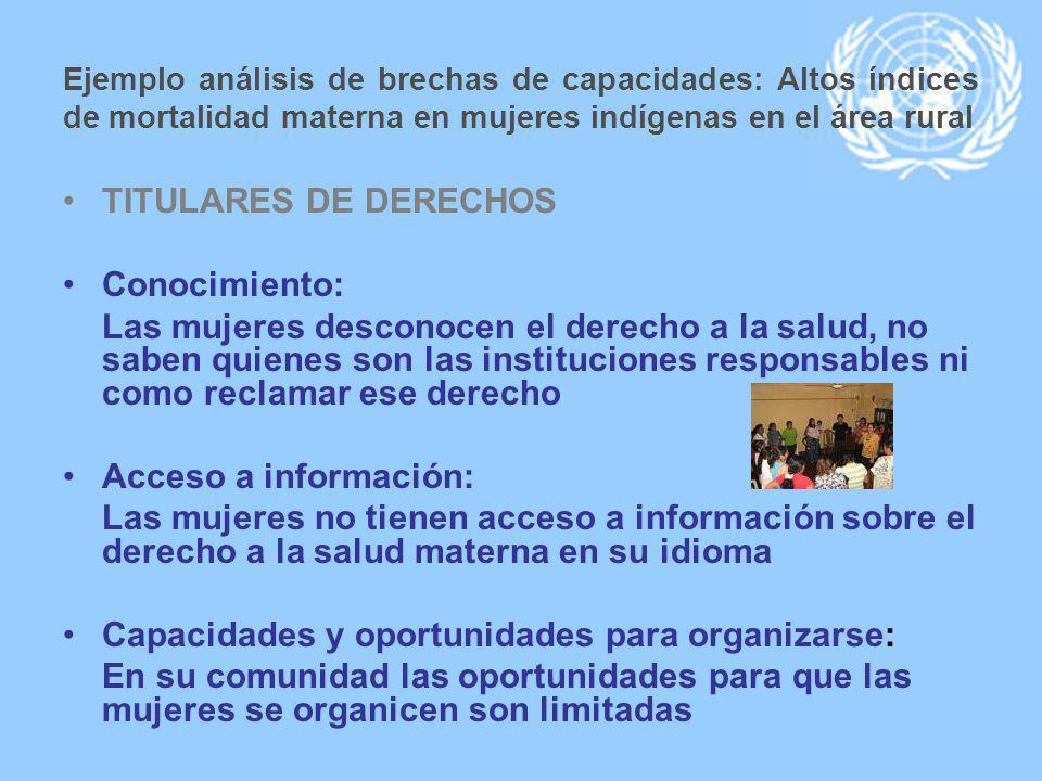 Capacidades y oportunidades para organizarse: