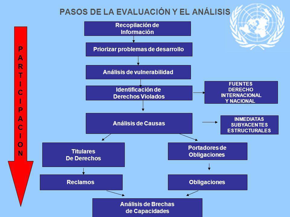 PASOS DE LA EVALUACIÓN Y EL ANÁLISIS