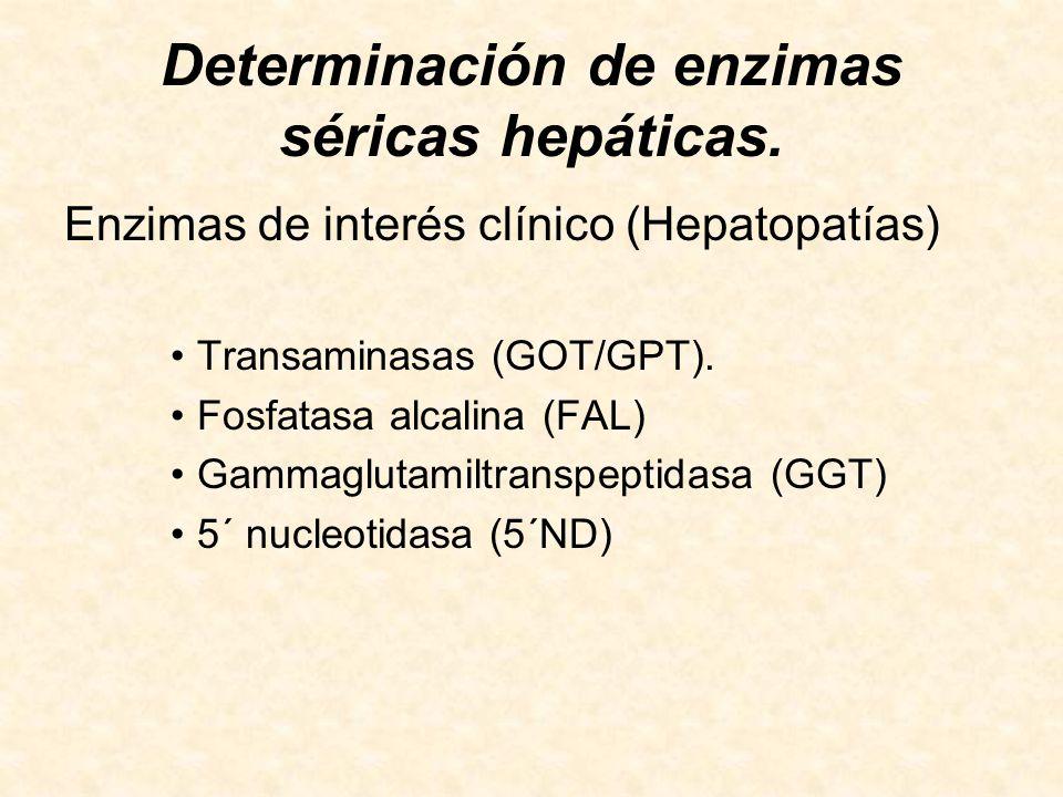 BIOQUÍMICA TECNICATURA EN ANÁLISIS CLÍNICOS - ppt descargar