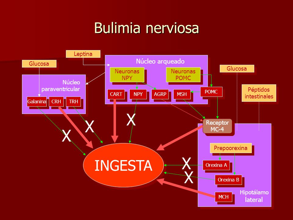 Resultado de imagen de bulimia nerviosa farmacologia