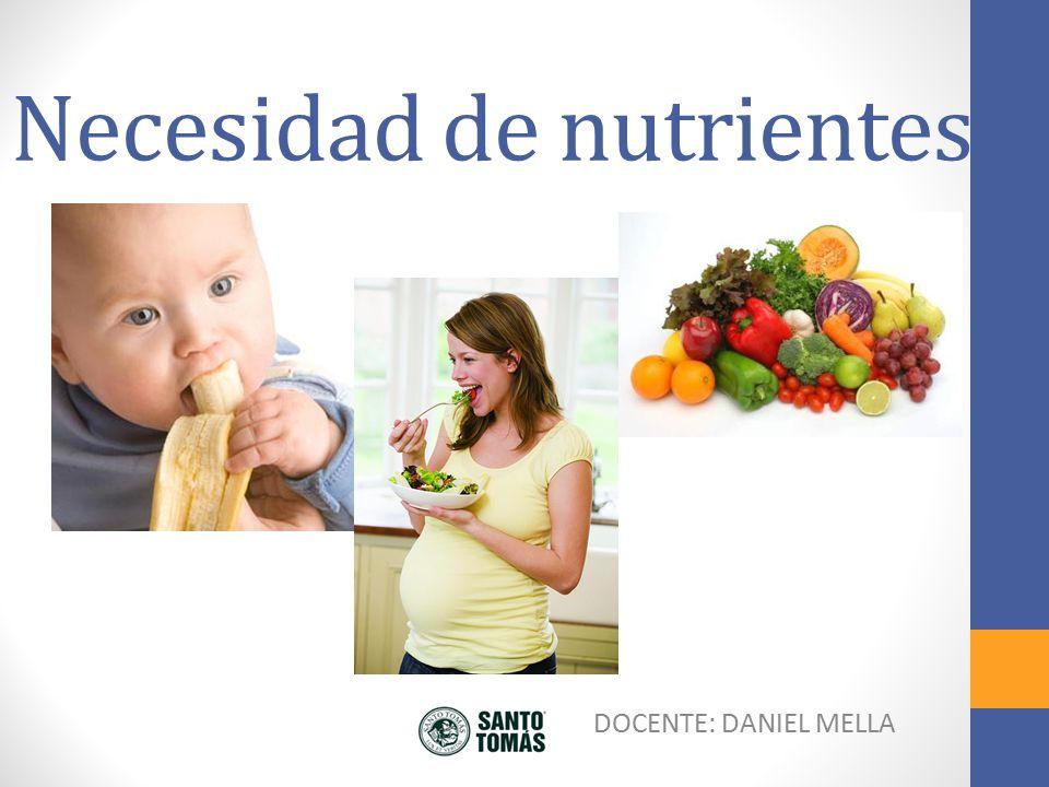 Necesidad de nutrientes
