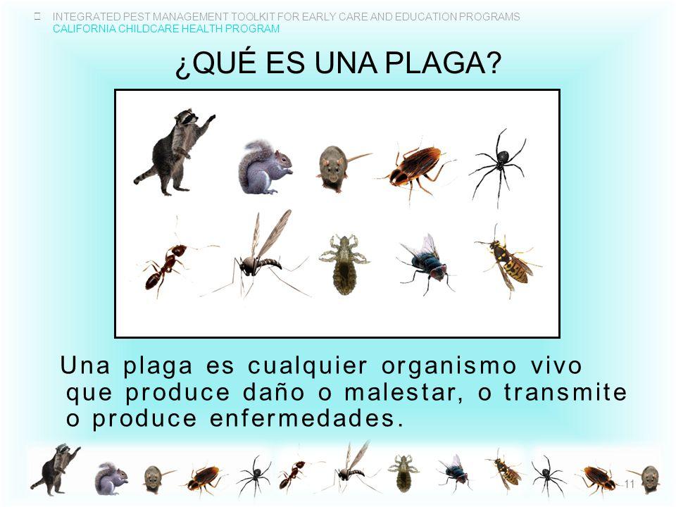 ¿QuÉ es una plaga Una plaga es cualquier organismo vivo que produce daño o malestar, o transmite o produce enfermedades.