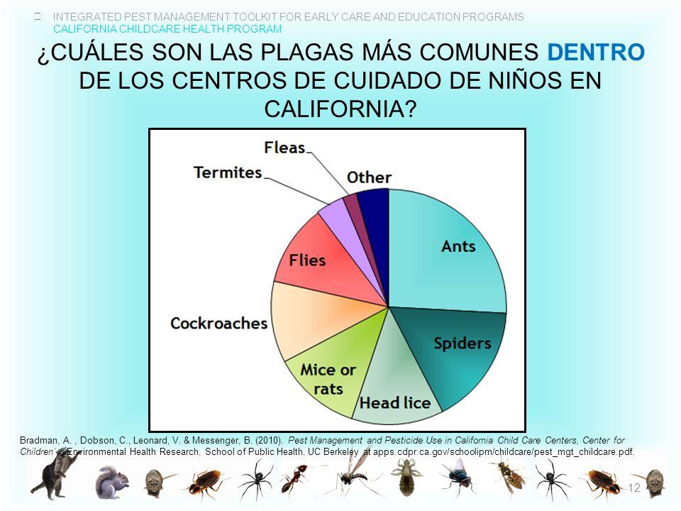 ¿CuÁles son las plagas mÁs comunes dentro de los centros de cuidado de niños en California