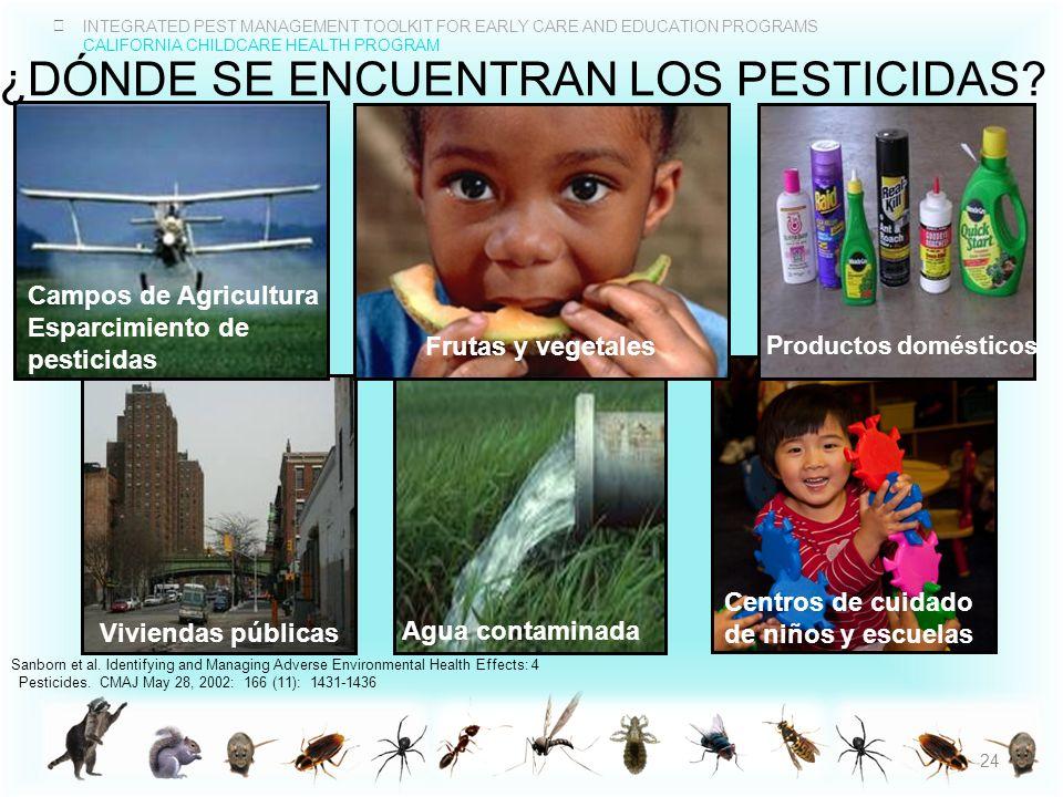 ¿DÓnde se encuentran los pesticidas