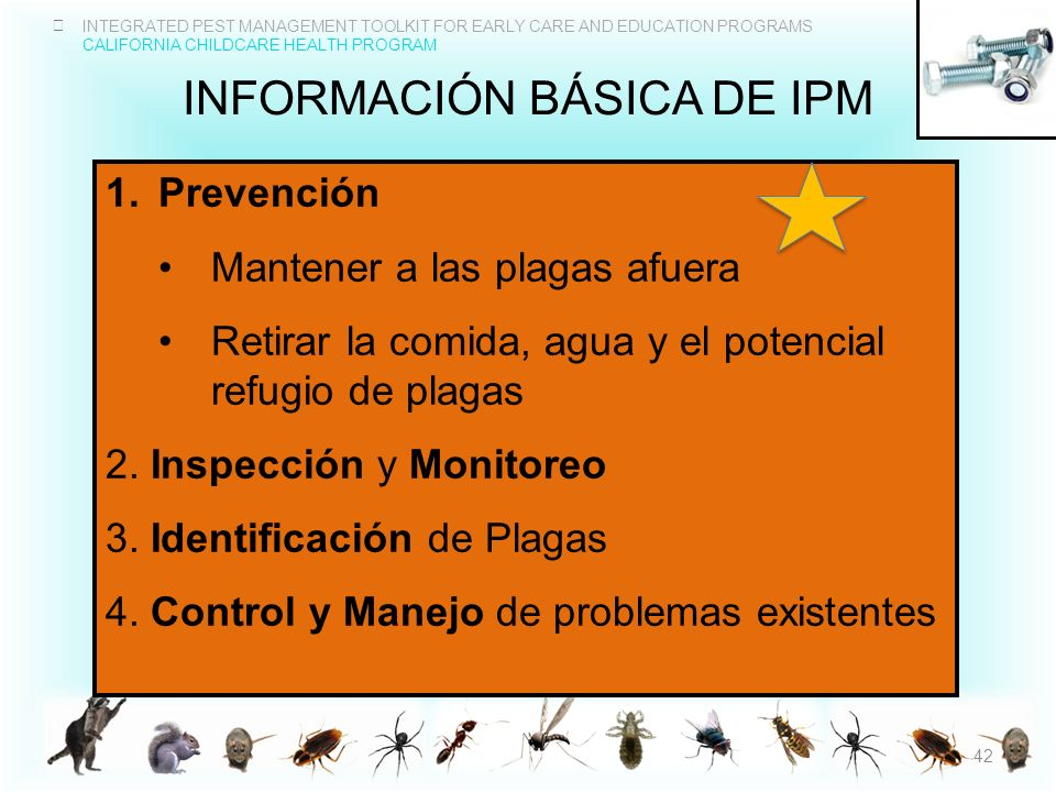 Información básica de IPM