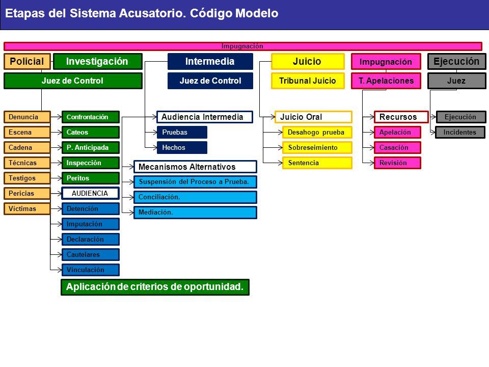 Sistema acusatorio tema no ppt descargar 3 etapas ccuart Images