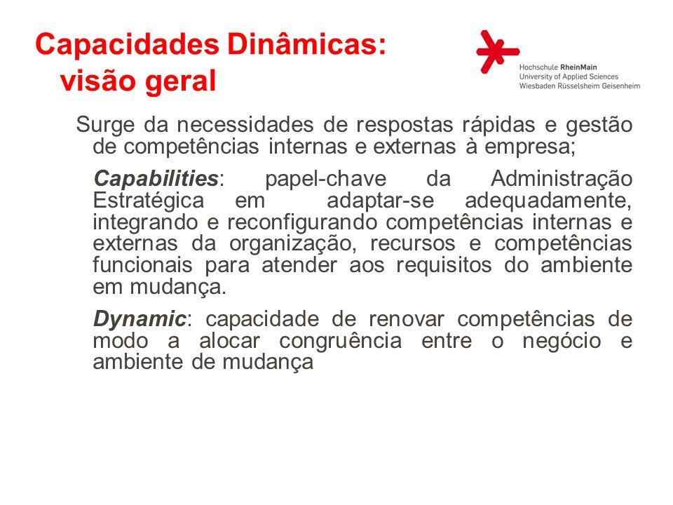 Capacidades Dinâmicas: visão geral