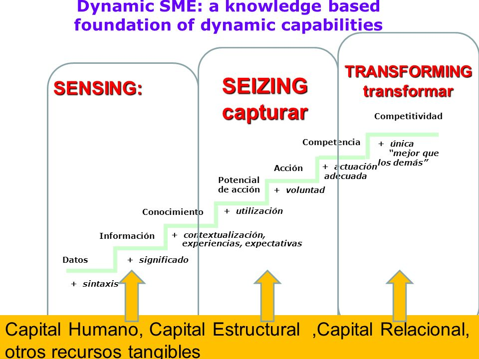 Dynamic SME: a knowledge based foundation of dynamic capabilities