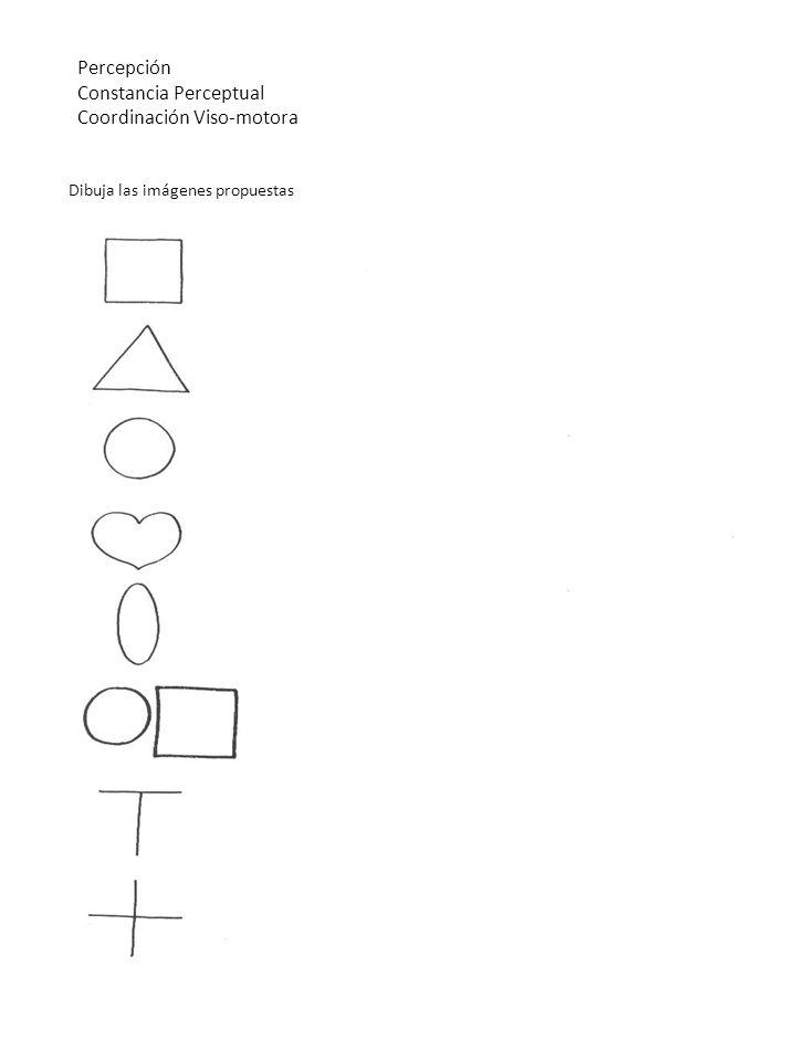 Constancia Perceptual Coordinación Viso-motora