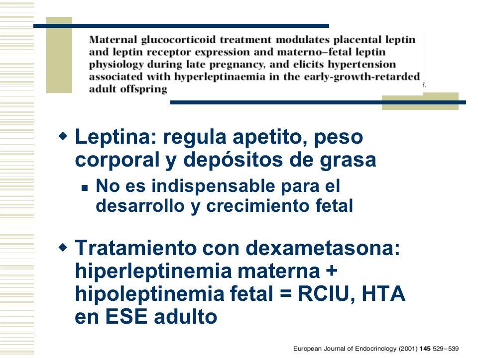 Leptina: regula apetito, peso corporal y depósitos de grasa