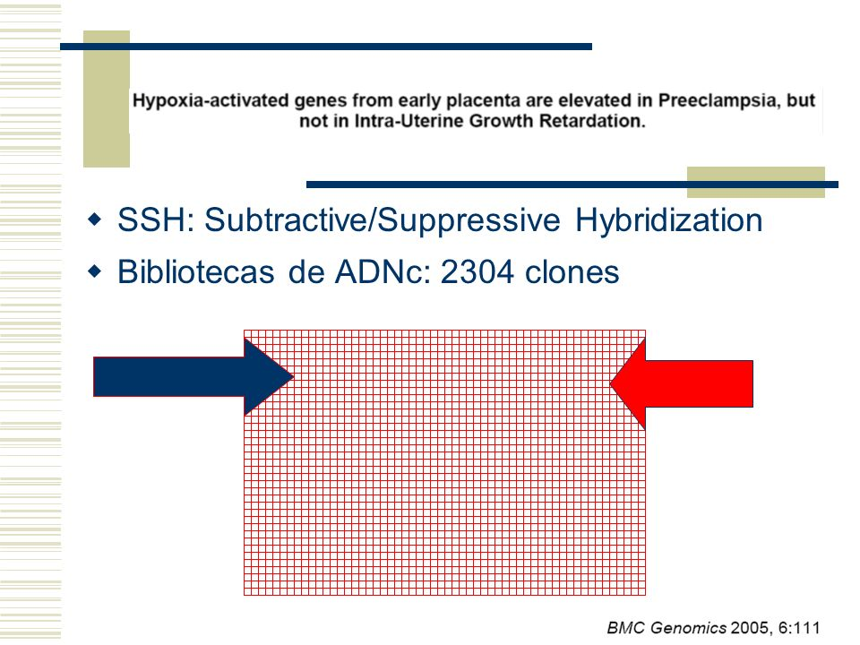 SSH: Subtractive/Suppressive Hybridization