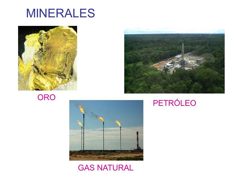 No renovables petroleo y minerales deepthroaters for Gas natural fenosa oficina directa