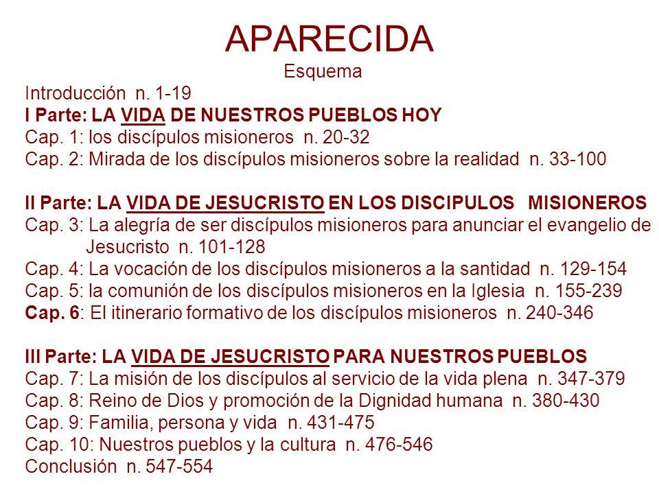 APARECIDA Esquema Introducción n. 1-19