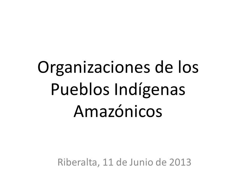 Organizaciones de los Pueblos Indígenas Amazónicos