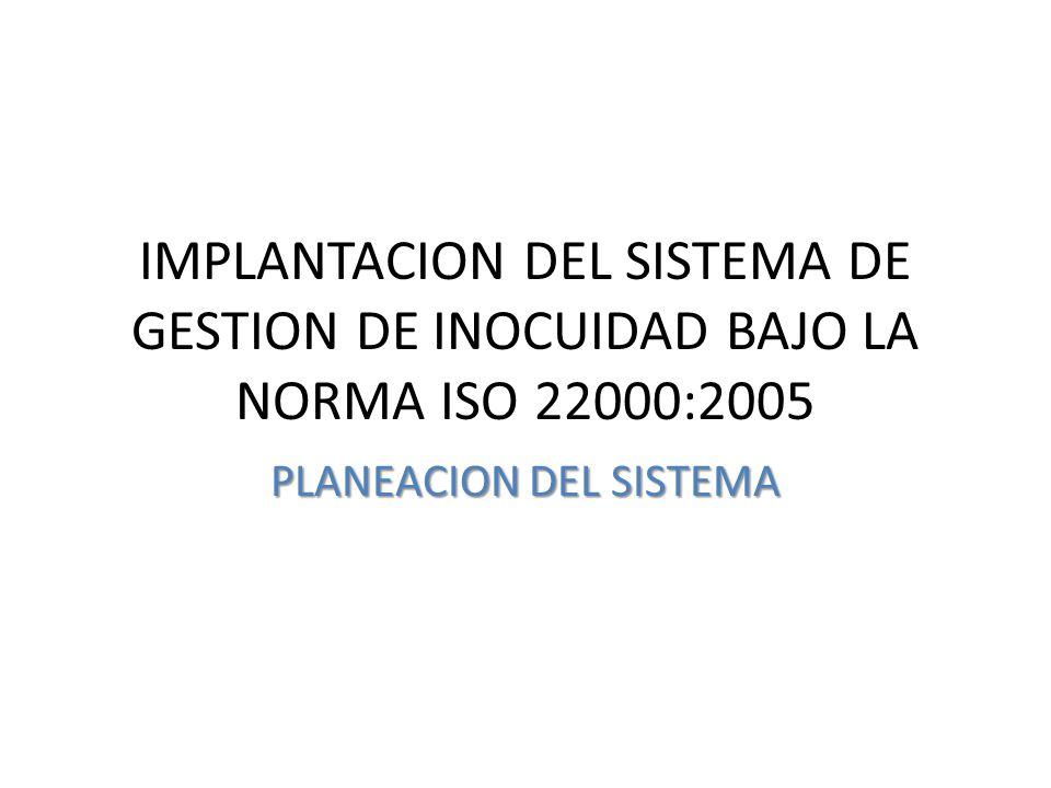 PLANEACION DEL SISTEMA